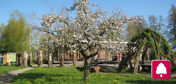 Naturstation Silberweide mit Kinder-Kürbisschnitzen