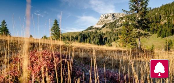 UNESCO Biosphäre Entlebuch – Aktionsfahrt